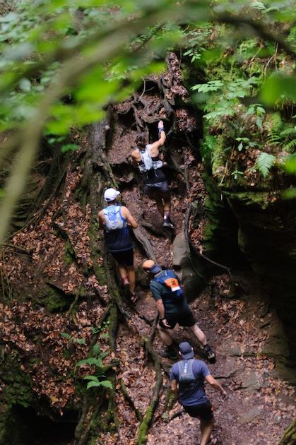 https://run-ultra.com/media/images/Mohican%2520100%2520Race%2520Report/Tree-root-climb-photo-credit-Butch-Phillips-Photography.JPG